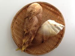 上田さんの筍